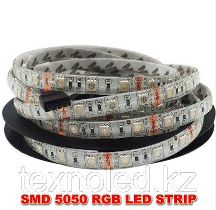 Светодиодная лента Led  RGB 5050 12v IP65, фото 2