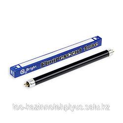 Лампа для детектора  6W