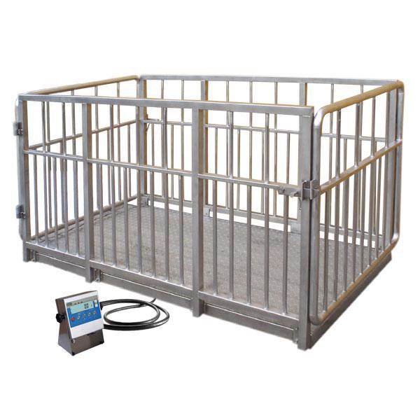 Весы для взвешивания животных - WPT/4I 2000 H1
