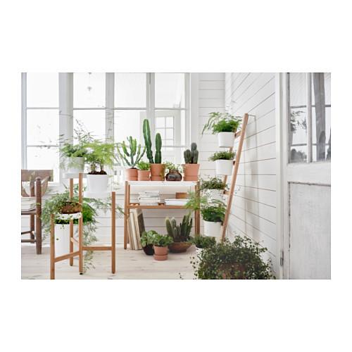 Подставки и пьедесталы для растений
