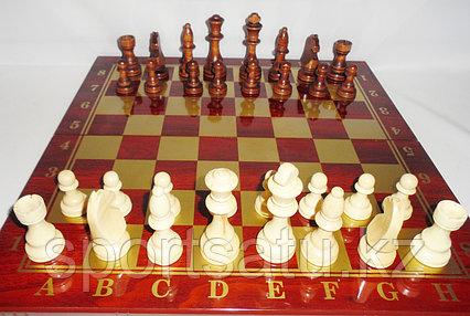 Шахматы  48см х 48см