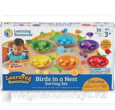 Развивающий набор «Цветные гнездышки» BIRDS IN NEST