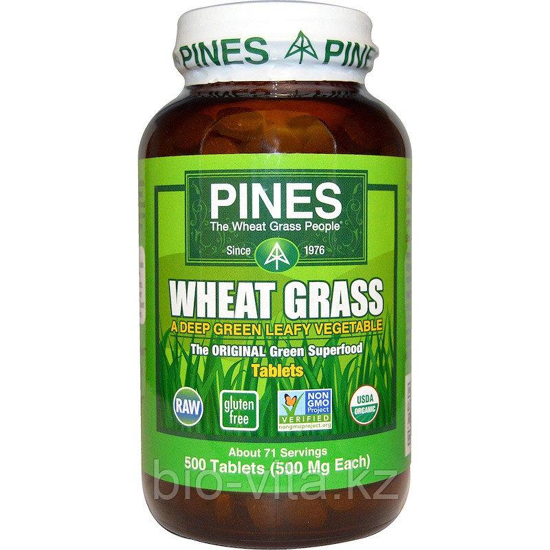 Pines International, Ростки пшеницы, 500 мг, 500 таблеток