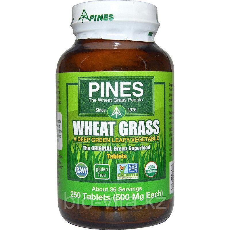 Pines International, Ростки пшеницы, 500 мг, 250таблеток