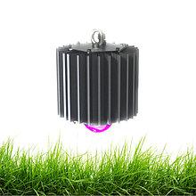 Светодиодные фито светильники и лампы для растений