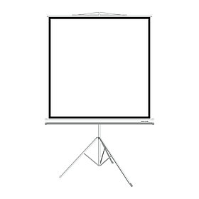 Экран для проекторов Deluxe DLS-T153xW