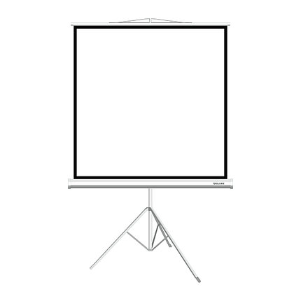Экран для проекторов Deluxe DLS-T180xW, фото 2