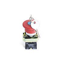 "Кнопка стоповая ANDELI XB2-BS142 (""Грибок"" с ключом), фото 2"