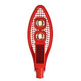 Светодиодный светильник ПромЛед Кобра-110 Cree Экстра, фото 3