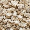 Агарикус (лиственничная губка), корни, 100 г, фото 2