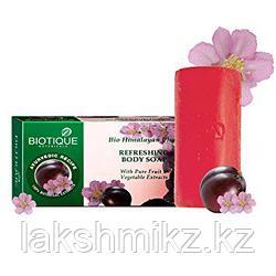 Мыло освежающее сливовое Bio Himalayan Plum Body Soap Biotique