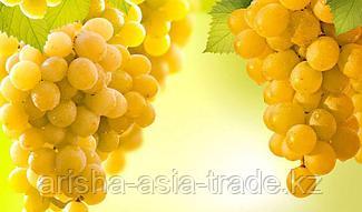 Саженец винограда Ркацители