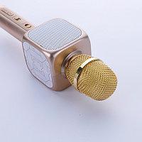 Караоке микрофон YS-81, фото 1