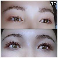 Ламинирование ресниц + Lash Botox