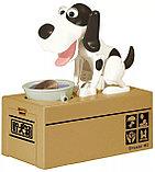 Копилка-собака поедающая монеты, фото 2