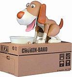 Копилка-собака поедающая монеты, фото 3