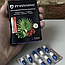 Предстанол (Predstanol) капсулы от простатита, фото 4