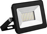 LED Прожектор SKAT 30W IP65