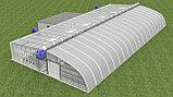 Строительство теплиц и тепличных комплексов по энергосберегающим технологиям, фото 2