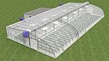 Строительство теплиц и тепличных комплексов по энергосберегающим технологиям, фото 4
