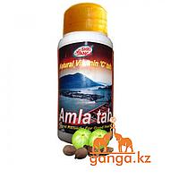 Амла - Антиоксидант, натуральный Витамин С (Amla SHRI GANGA), 200 таб.