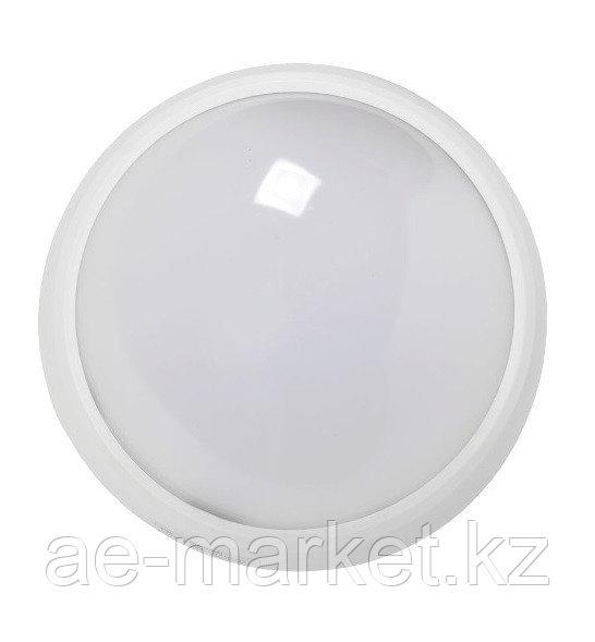 LED ДПО 3030 Круг. 12w IP54 бел