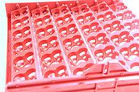 Лотки для перепелиных 144 яиц 2в1 , фото 1