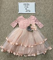 Платья  Monita