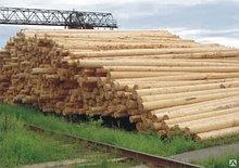 Деревянные столбы ЛЭП пропитанные