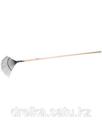 Грабли веерные ЗУБР 4-39591, с черенком, 22 круглых зубца , фото 2
