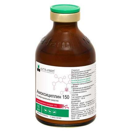 Амоксициллин 50 мл, фото 2