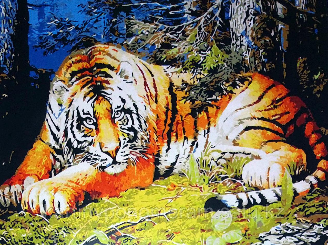 """Картина по номерам """"Тигр 3"""""""
