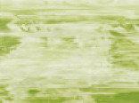 Витражная пленка цвета Sage (Темно-оливковый)