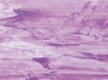 Витражная пленка цвета Blackberry (Светло-фиолетовый)