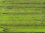 Витражная пленка цвета Emerald (Светло-зеленый)