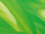 Витражная пленка цвета Springtime (Светло-зеленый)