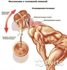 Тяги для тренировки шеи - головная лямка - фото 5