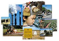 Экологические проблемы и болезни цивилизации