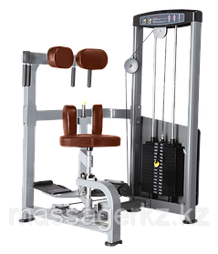 BRONZE GYM D-011 Торс-машина