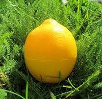 """Крем для рук """"Лимонный пунш"""""""
