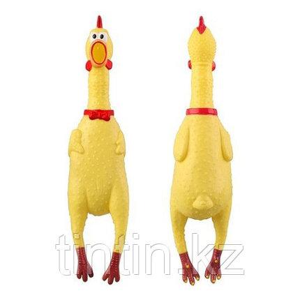 """Сумасшедшая курица - """"Crazy chicken"""" 31 см, фото 2"""