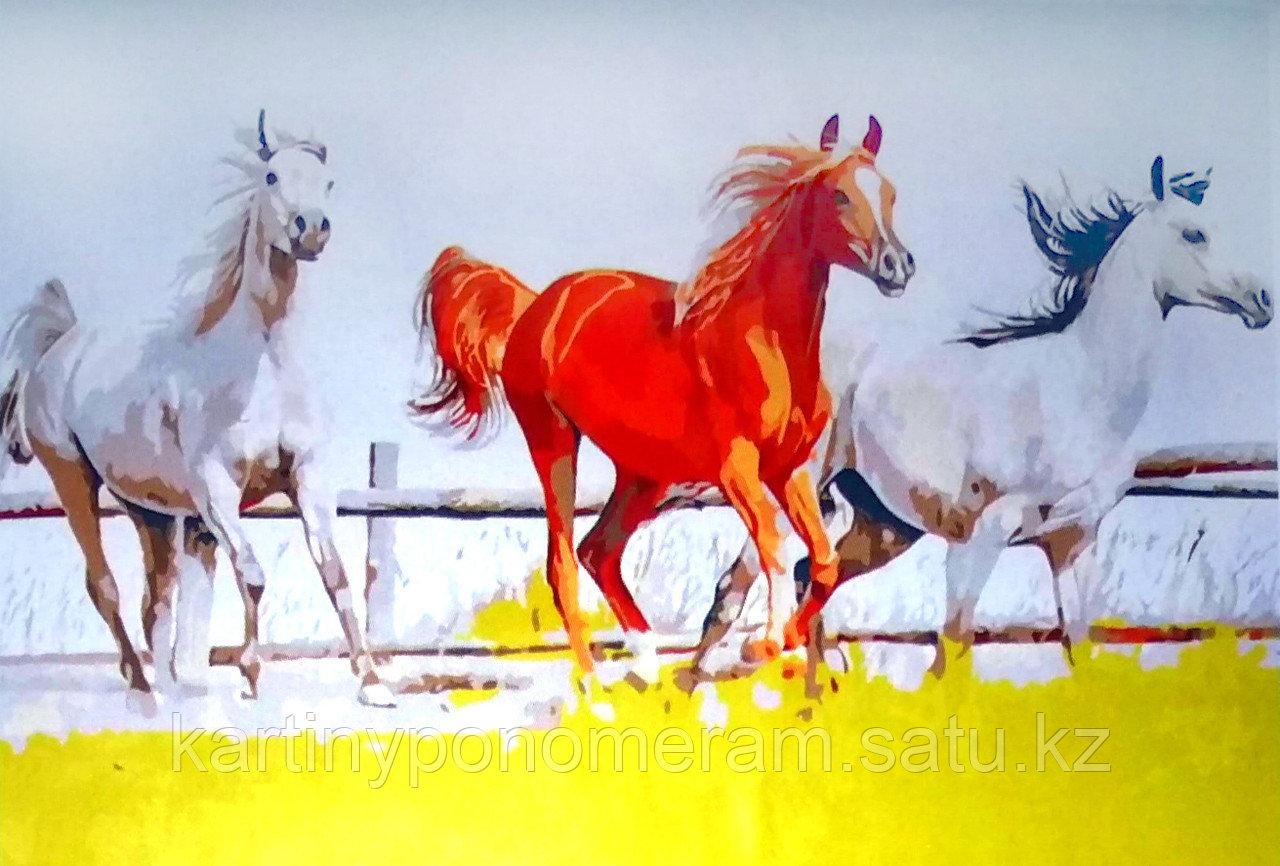 """Картины по номерам """"Лошадки на прогулке 30х40"""""""