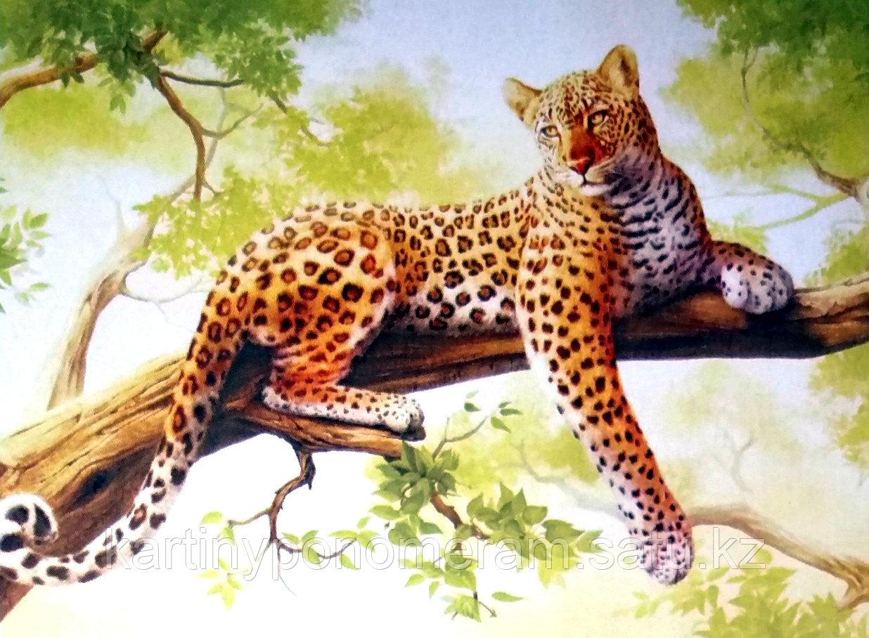 """Картины по номерам """"Леопард на ветке 3 (30х40)"""""""