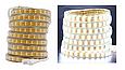 Светодиодная лента SMD 2835 Двойная 220V PREMIUM 156д/м, IP67, Белый, Теплый, фото 2