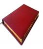 Ежедневник А4, красный, полудатированный с золотым срезом