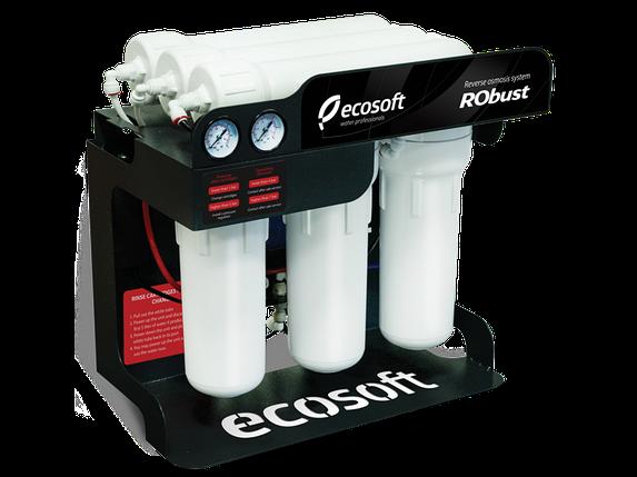 Фильтр обратного осмоса ecosoft robust, фото 2