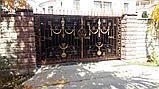 Ворота из иранского материала, фото 2