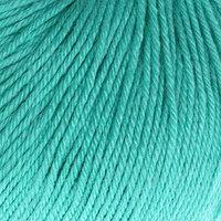 Пряжа 'Baby Wool' 20 кашемир, 40 меринос. шерсть, 40 акрил 175м/50гр (832 св. бирюзов.) (комплект из 5 шт.)