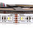 Светодиодная лента RGB+W SMD 5050 IP33 12V 60д/м, негерметичная, фото 2