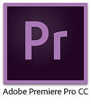 Adobe Premiere Pro CC for Teams Multiple Platforms Multi European Languages New Subscription 12 months